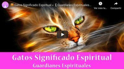 Gatos Significado Espiritual