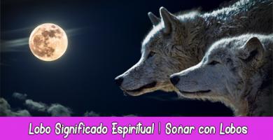 Lobo Significado Espiritual Soñar con Lobos