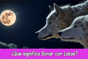 que significa soñar con lobos