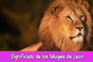 Significado de los tatuajes de León