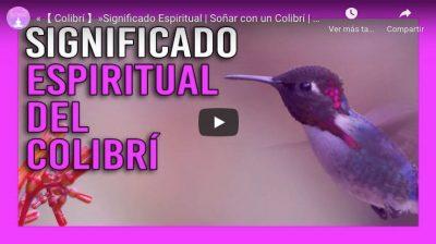 colibri significado espiritual