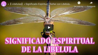 libelula significado espiritual