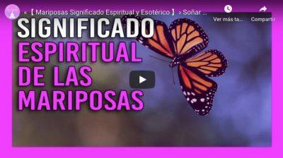 significado espiritual de las mariposas