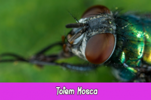 totem mosca