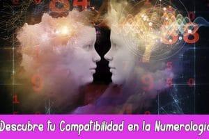 Descubre tu Compatibilidad en la Numerología