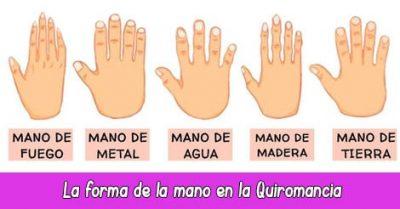 Significado forma de la mano quiromancia