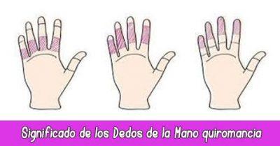 Significado de los Dedos de la Mano quiromancia