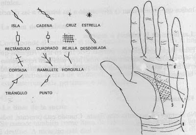 símbolos especiales en las líneas de las manos