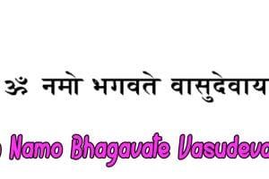 mantra Om Namo Bhagavate Vasudevaya